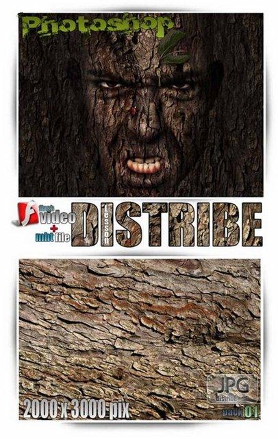 distribe