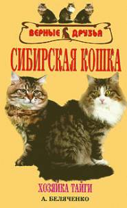 Сибирская кошка | А.Беляченко