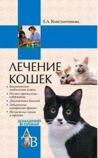 Лечение кошек | Константинова Е.А