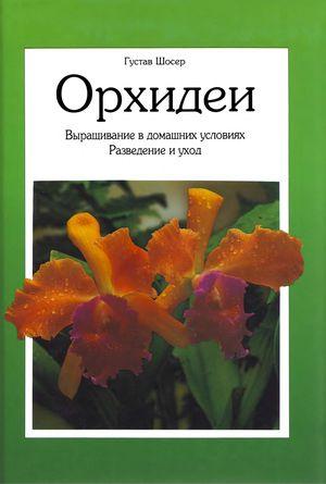 Орхидеи: Выращивание в домашних условиях. Разведение и уход