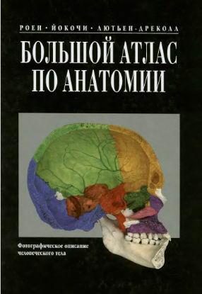 Большой атлас по анатомии Роен, Йокочи, Лютьен - Дреколл